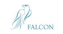Level Production   Client   Falcon   Logo